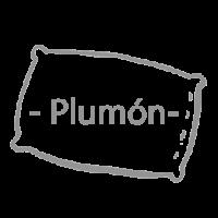 logo_plumon